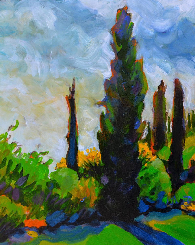 Morning Cypresses